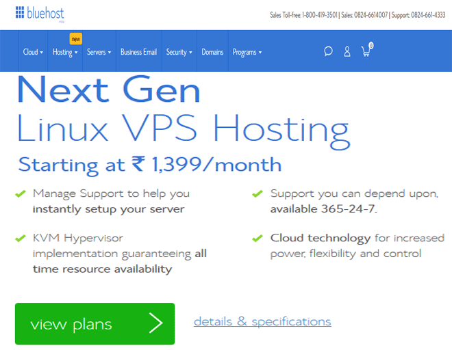 Best India VPS hosting deal Services - Buy India VPS hosting plans